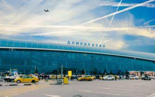 Как добраться до Домодедово на общественном транспорте, такси и своей машине